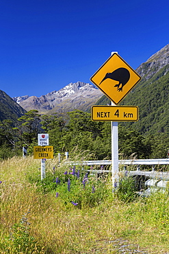 "Warning sign, ""Kiwis next 4km"" at Greyneys Creek, looking towards Mt. Oates, 2041m, Canterbury Region, New Zealand, Oceania"