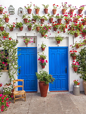 Blue front doors with many red geraniums in flowerpots on a house wall, Fiesta de los Patios, Cordoba, Andalusia, Spain, Europe