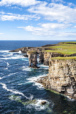 The cliffs of Yesnaby with the 35m high surf pillar, called Yesnaby Castle Sandwick, Mainland, Orkney Islands, Scotland, Great Britain