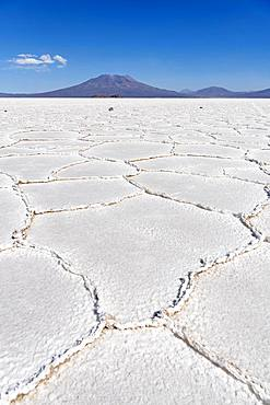 Salt crust, Salar de Uyuni, Altiplano, Bolivia, South America