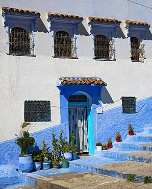 Facade, entrance with flower pots, blue house, medina of Chefchaouen, Chaouen, Tanger-Tetouan, Morocco, Africa
