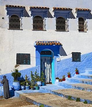 Facade, entrance with flower pots, blue house, medina of Chefchaouen, Chaouen, Tanger-Tetouan, Morocco, Africa