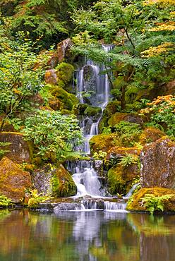 Pond with waterfall, Japanese garden, Portland, Oregon, USA, North America