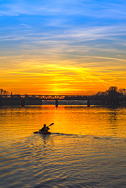 Kayaker on the Main paddles at sunset, Frankfurt am Main, Hesse, Germany, Europe