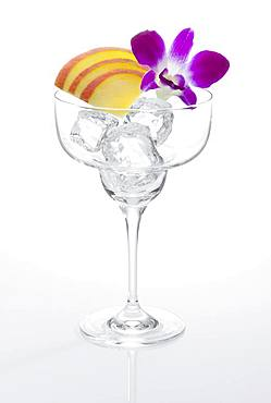 Glass prepared for cocktail, decorated with apple slice cubes and edible orchid blossom, ice cube, Germany, Europe