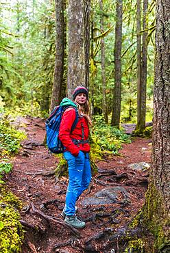Hiker on hiking trail in rainforest, Mount Baker-Snoqualmie National Forest, Washington, USA, North America
