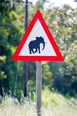 Warning sign, Warning of wild elephants, Manyeleti Game Reserve, South Africa, Africa