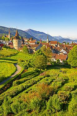 Town view with Capuchin tower and church, old town, Rigi at the back, Zug, Canton Zug, Switzerland, Europe