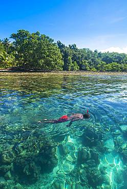Man snorkeling in the clear waters, Buka, Papua New Guinea, Oceania