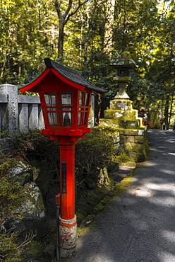 Red Lantern, Hakone Shrine, Shinto Shrine, Hakone, Fuji Hakone Izu National Park, Japan, Asia