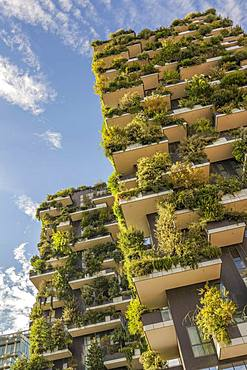 Bosco Verticale or Vertical Forest residential towers, architect Boeri, Porta Nuova district, Milan, Lombardy, Italy, Europe