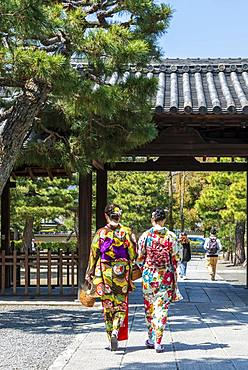 Japanese women dressed with kimono, colorful traditional clothes, at Kennin-ji Temple, Old Town of Kyoto, Higashiyama, Kyoto, Japan, Asia