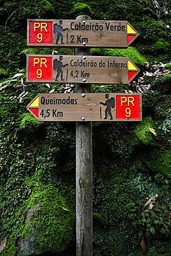 Signpost Hiking trail PR 9 Levada Levada Levada Caldeirao Verde, Queimadas, Caldeirao do Inferno, Rainforest, Madeira, Portugal, Europe