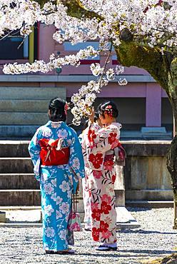 Japanese women with kimono at pagoda Amidado, Chion-in temple, Kyoto, Japan, Asia