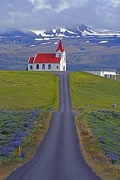 Road leads to the church of Ingjaldsholl behind the Snaefellsnessjoekull, Snaefellsness Peninsula, Iceland, Europe