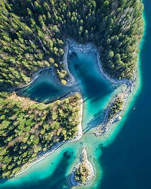 Coastline with islands, coniferous forest, turquoise water, Eibsee lake, Germany, Europe