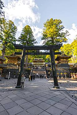 Torii gate at Tosho-gu Shrine from the 17th century, Shinto Shrine, shrines and temple of Nikko, UNESCO World Heritage Site, Nikko, Japan, Asia