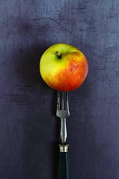 Apple on fork, Germany, Europe