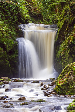 Geroldsau Waterfall, Grobbach River, Geroldsau, Baden-Baden, Northern Black Forest, Baden-Wuerttemberg, Germany, Europe