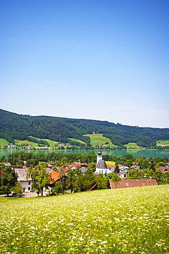 Zell am moss with Irrsee, in spring, Salzkammergut, Upper Austria, Austria, Europe
