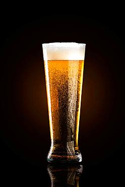 Glass of cold beer, black background, studio shot, Austria, Europe