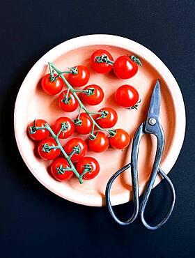 Tomato dish, fresh cut tomatoes
