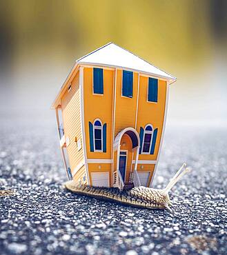 House on miniature snail, conceptual image