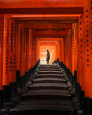 Fushimi Inari Taisha Shrine with person, Kyoto, Japan, Asia