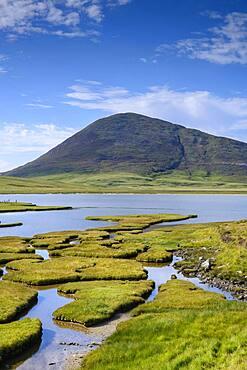 Marsh landscape near Northton with Ceapabhal Hill, Isle of Harris, Scotland, Great Britain