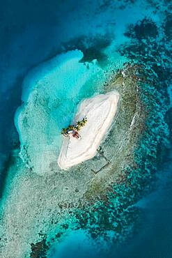 Aerial view, tropical island with palm trees and huts, San Blas Islands, Panama, Central America
