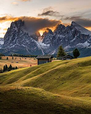 Sunrise, Hiker, Alpine meadows with huts and trees, Alpe di Siusi, Kompatsch, South Tyrol, Italy, Europe