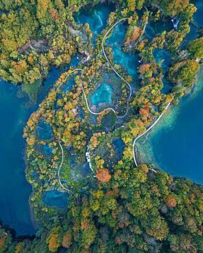 Aerial view, winding path through Plitvice Lakes in autumn, National Park Plitvice Lakes, Dalmatia, Croatia, Europe
