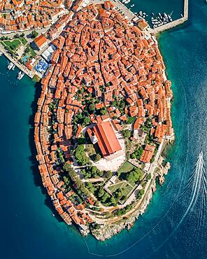 Aerial view, Rovinj old town with the church St. Euphemia from above, Croatia, Europe