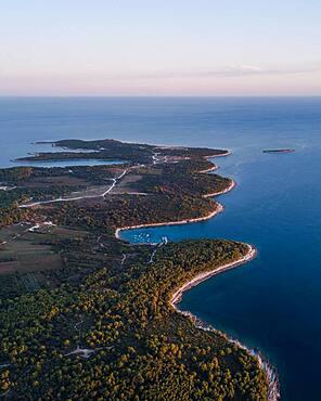Aerial view, headland with bays, Premantura peninsula, Croatia, Europe