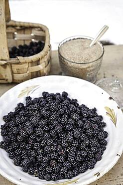 Wild blackberries, brown sugar, picked in the Sierra de Gredos, La Lastra del Cano, Spain, Europe