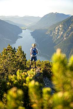 Mountaineer, young man looking over mountain landscape, mountain pines at the summit of the Baerenkopf, view of the Achensee at sunset, Karwendel, Tyrol, Austria, Europe