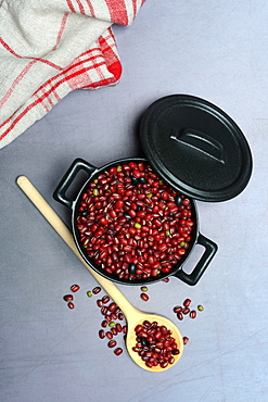 Dried beans in cast iron pot, cooking spoon, Germany, Europe