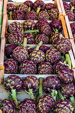 Crate of artichokes on a market stale