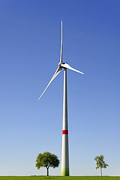 Wind power plant at a green corn field with trees, blue sky, North Rhine-Westphalia, Germany, Europe
