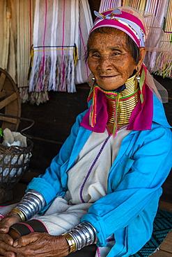 Portrait of a Padaung, giraffe, woman, Loikaw area, Panpet, Kayah state, Myanmar, Asia
