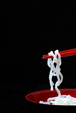 Shirataki noodles made from konjac flour on chopsticks, Germany, Europe