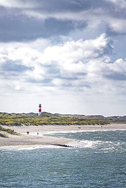 Sand beach, sea and red-white lighthouse List-Ost in the dunes, Ellenbogen, Sylt, North Frisian Island, North Sea, North Frisia, Schleswig-Holstein, Germany, Europe