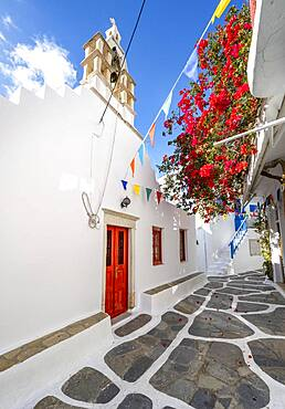 Small alley with white Greek Orthodox church and red bougainvillea, Chora, Mykonos Town, Mykonos, Cyclades, Aegean Sea, Greece, Europe