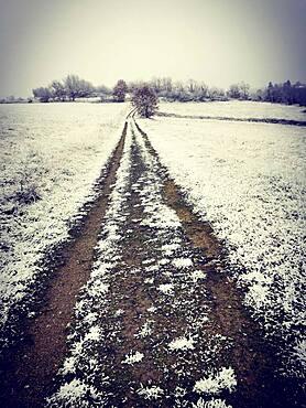 Path in winter, Puy de Dome department, Auvergne-Rhone-Alpes, France, Europe