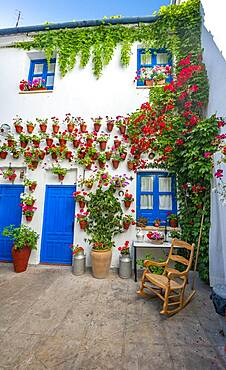 Blue entrance door in courtyard decorated with flowers, geraniums in flower pots on the house wall, Fiesta de los Patios, Cordoba, Andalucia, Spain, Europe