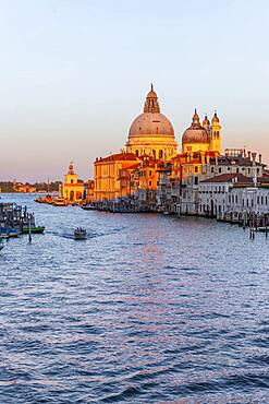 Evening atmosphere, view from the Ponte dell'Accademia to the Grand Canal and the Basilica Santa Maria della Salute, Venice, Veneto, Italy, Europe