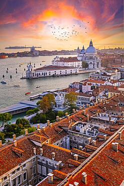 Evening atmosphere, dramatic sunset at the Grand Canal, Basilica Santa Maria della Salute, Venice, Veneto region, Italy, Europe