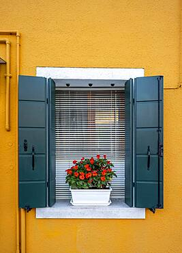 Yellow house, window with flowers, colorful house, colorful facade, Burano Island, Venice, Veneto, Italy, Europe