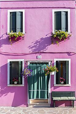 Pink house, colorful facade, Burano Island, Venice, Veneto, Italy, Europe