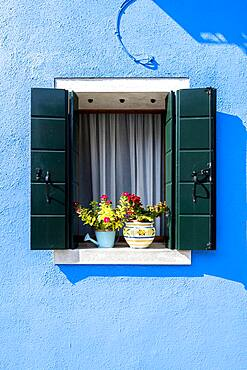 Blue house wall with window and flower decoration, colorful houses, colorful facade, Burano Island, Venice, Veneto, Italy, Europe